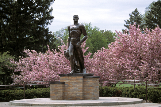 Statue of Sparty at MSU with pink flowering tree in the background